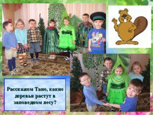 Расскажем Тане, какие деревья растут в заповедном лесу?
