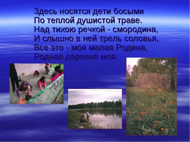 Здесь носятся дети босыми По теплой душистой траве. Над тихою речкой - сморо...