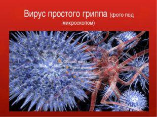 Вирус простого гриппа (фото под микроскопом)