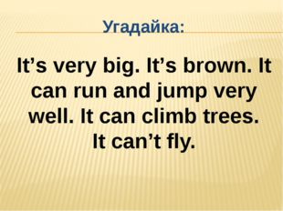 Угадайка: It's very big. It's brown. It can run and jump very well. It can cl