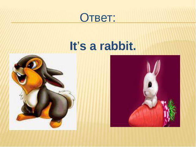 Ответ: It's a rabbit.