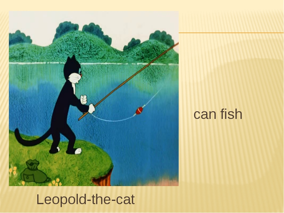 can fish Leopold-the-cat