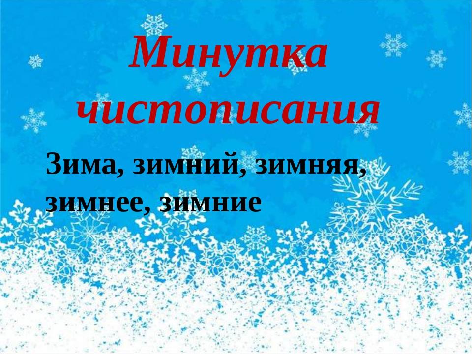 Минутка чистописания Зима, зимний, зимняя, зимнее, зимние