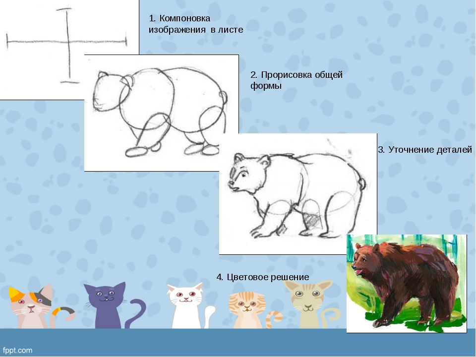 1. Компоновка изображения в листе 2. Прорисовка общей формы 3. Уточнение дета...