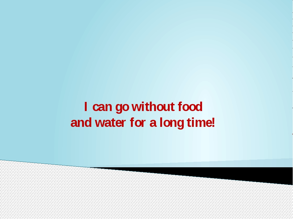 I can go without food and water for a long time!