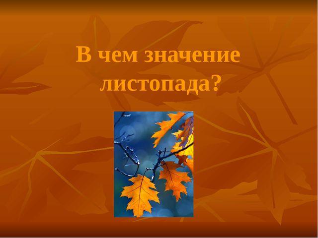 В чем значение листопада?