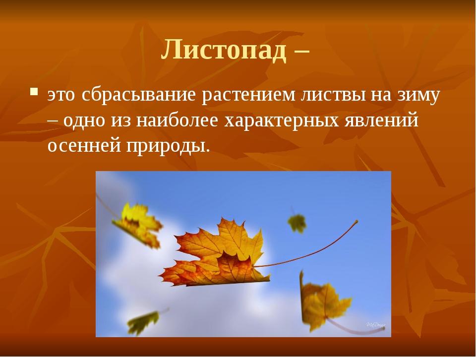 Листопад – это сбрасывание растением листвы на зиму – одно из наиболее характ...
