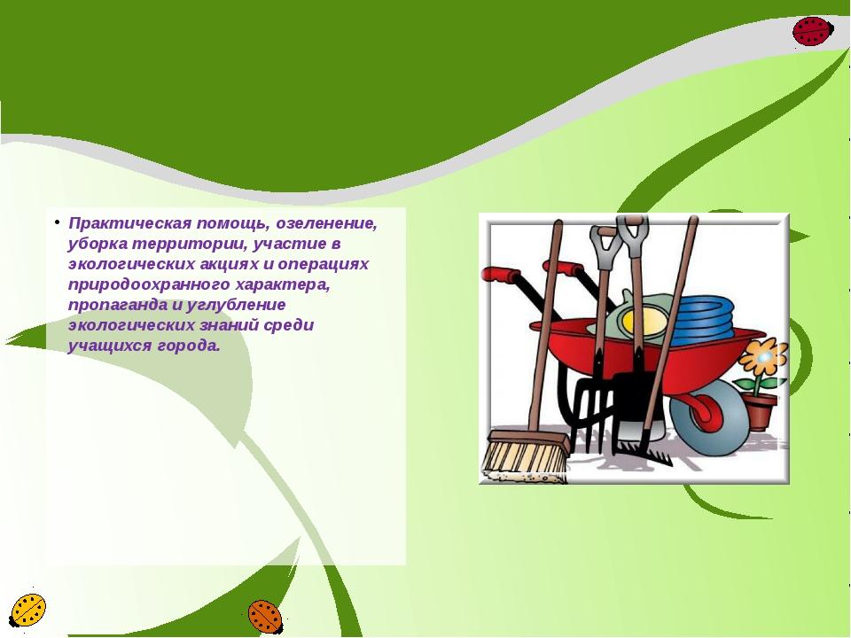 Практическая помощь, озеленение, уборка территории, участие в экологических а...