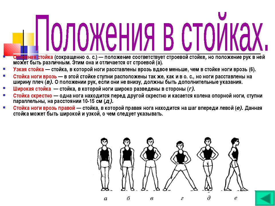Основная стойка (сокращенно о. с.) — положение соответствует строевой стойке,...