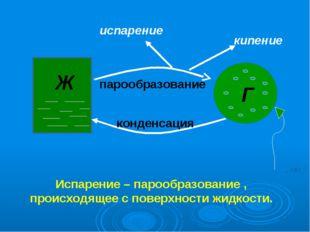 Ж Г парообразование конденсация кипение испарение Испарение – парообразование