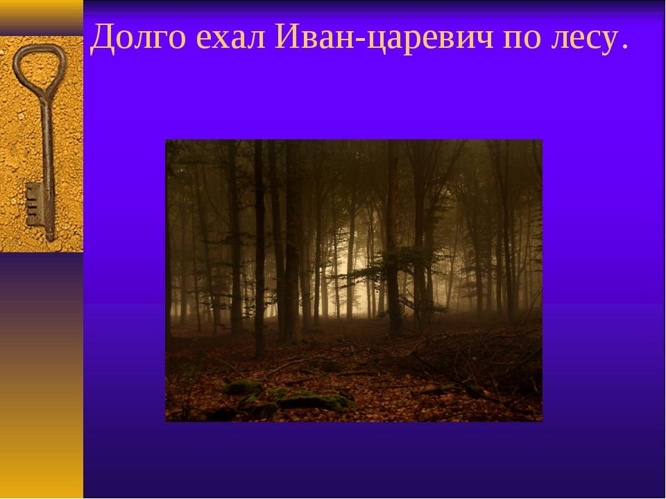 Долго ехал Иван-царевич по лесу.