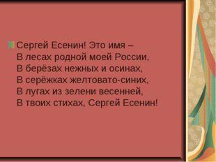 Сергей Есенин! Это имя – В лесах родной моей России, В берёзах нежных и осина