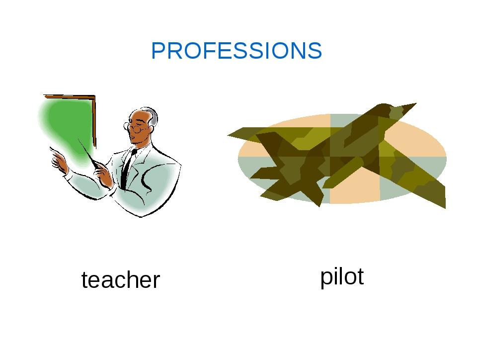 PROFESSIONS teacher pilot