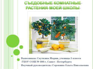 Выполнила: Сауткина Мария, ученица 5 класса ГБОУ СОШ № 386 г. Санкт - Петербу