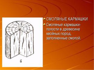СМОЛЯНЫЕ КАРМАШКИ Смоляные кармашки- полости в древесине хвойных пород, запол