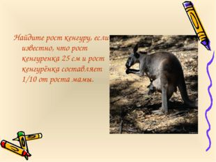 Найдите рост кенгуру, если известно, что рост кенгуренка 25 см и рост кенгурё