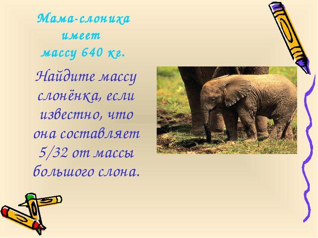 Мама-слониха имеет массу 640 кг. Найдите массу слонёнка, если известно, что о...
