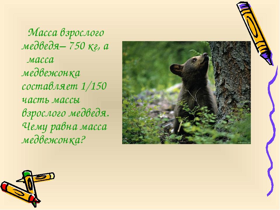Масса взрослого медведя– 750 кг, а масса медвежонка составляет 1/150 часть м...