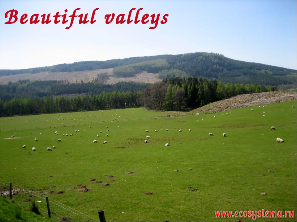 Beautiful valleys