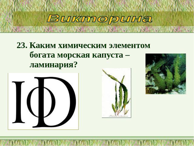 23. Каким химическим элементом богата морская капуста – ламинария?