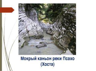 Мокрый каньон реки Псахо (Хоста) http://img1.liveinternet.ru/images/attach/c/