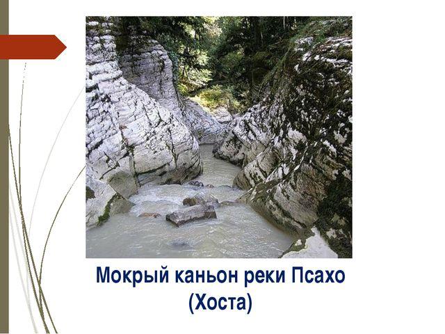 Мокрый каньон реки Псахо (Хоста) http://img1.liveinternet.ru/images/attach/c/...