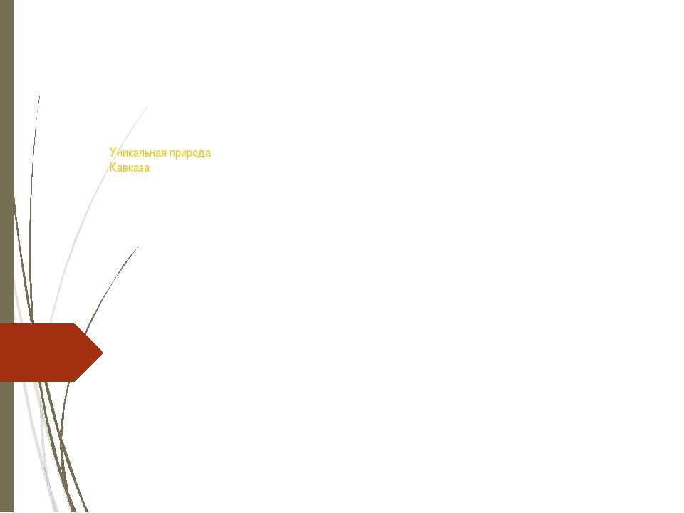 Уникальная природа Кавказа Презентация к уроку «Окружающий мир» Выполнила уч...