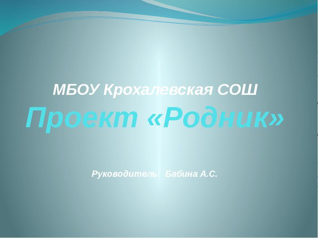 МБОУ Крохалевская СОШ Проект «Родник» Руководитель: Бабина А.С.