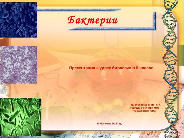 Бактерии Презентация к уроку биологии в 5 классе Подготовил Коровин С.И. учит...