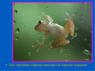 Все лягушки хорошо прыгают и хорошо плавают.