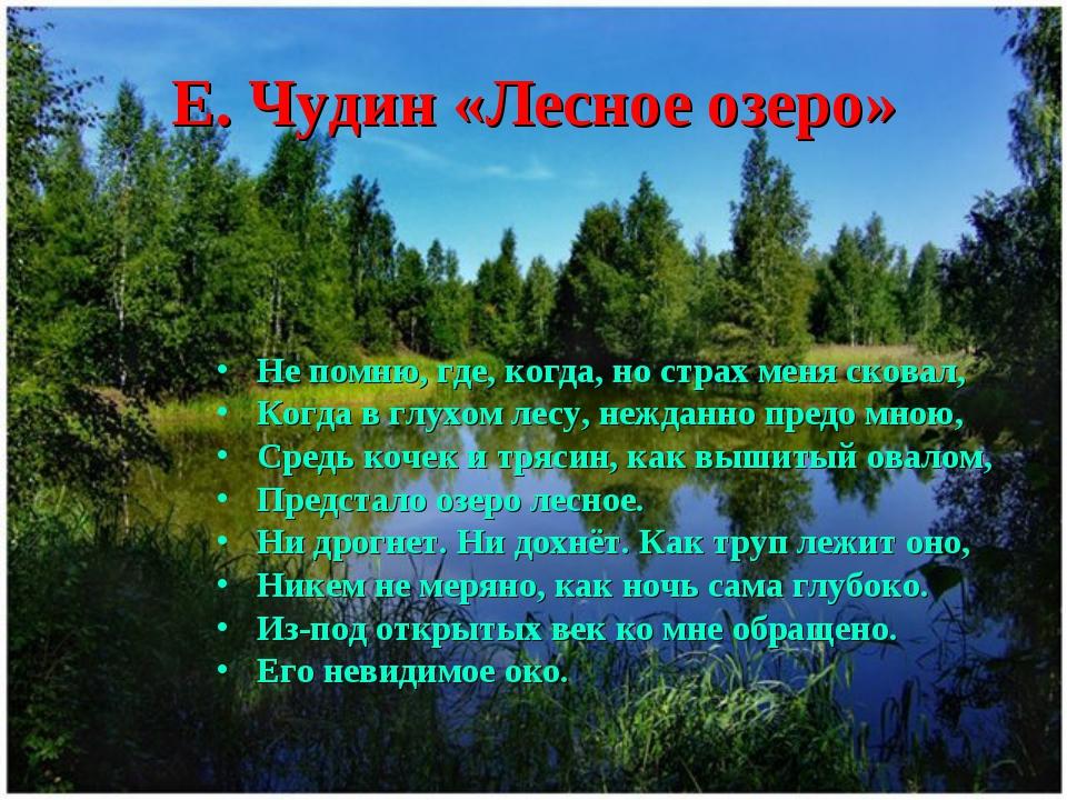 Е. Чудин «Лесное озеро» Не помню, где, когда, но страх меня сковал, Когда в г...
