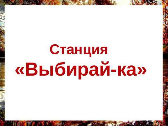 Станция «Выбирай-ка»