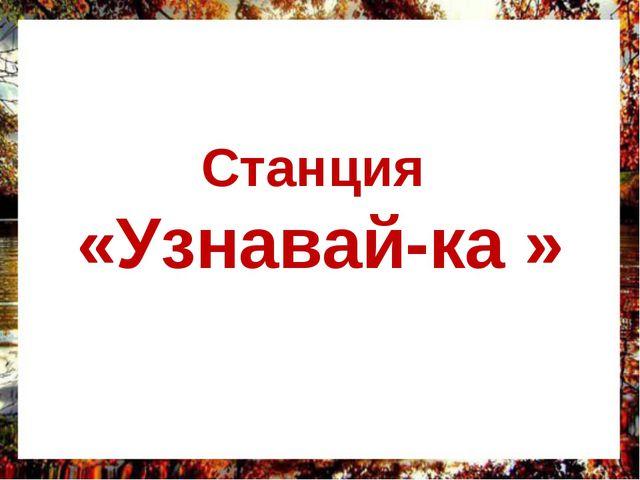 Станция «Узнавай-ка »