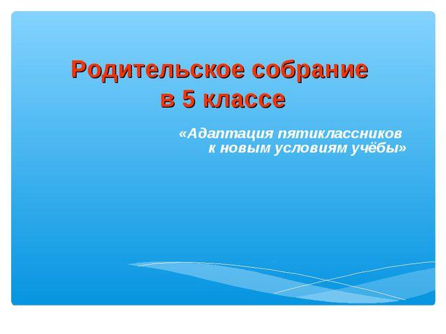 «Адаптация пятиклассников к новым условиям учёбы» Родительское собрание в 5 к...