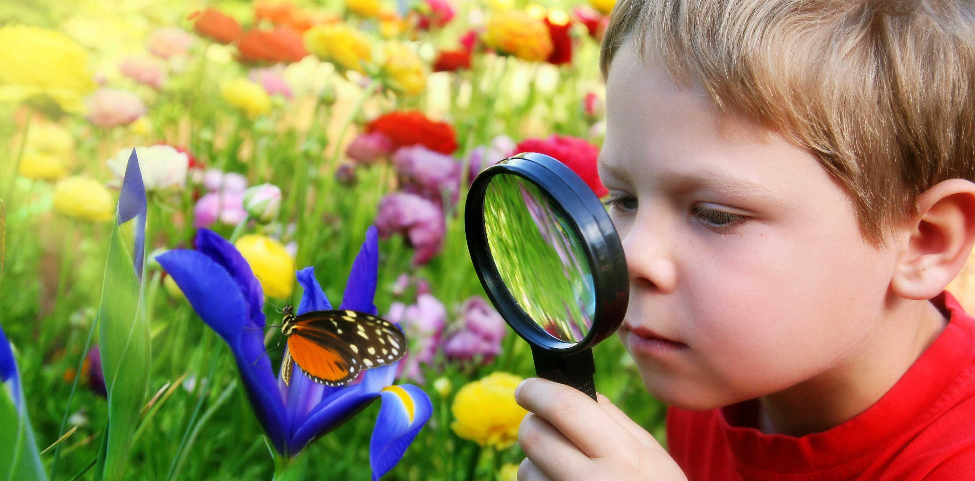 https://vec.com.ua/wp-content/uploads/2015/02/boy_magnifyingglass_900.jpg
