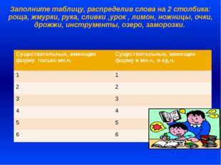 Заполните таблицу, распределив слова на 2 столбика: роща, жмурки, рука, сливк