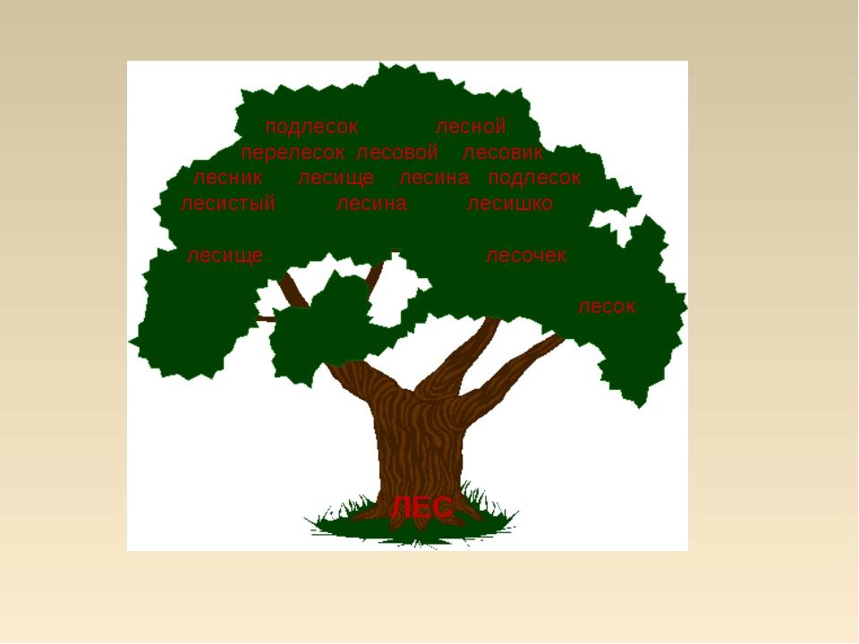 подлесок лесной перелесок лесовой лесовик лесник лесище лесина подлесок леси...