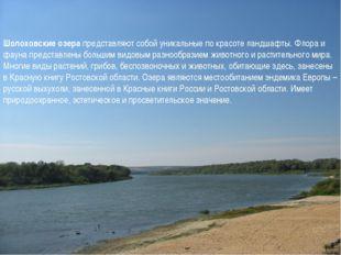 Шолоховские озера представляют собой уникальные по красоте ландшафты. Флора и