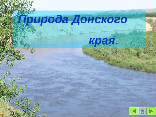 Природа Донского края.