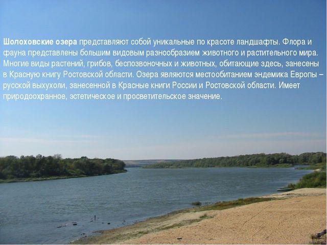 Шолоховские озера представляют собой уникальные по красоте ландшафты. Флора и...