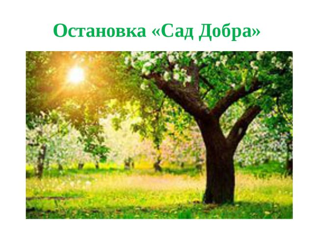 Остановка «Сад Добра»