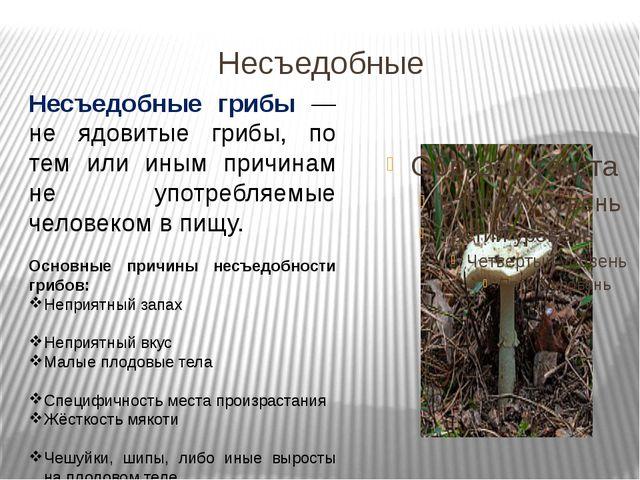 Несъедобные Несъедобные грибы — не ядовитые грибы, по тем или иным причинам н...