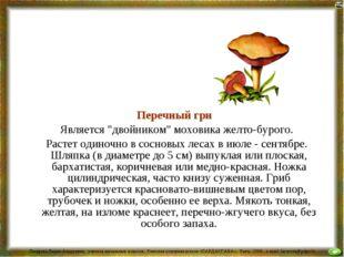 """Перечный гриб Является """"двойником"""" моховика желто-бурого. Растет одиночно в"""