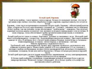 Белый гриб, боровик Гриб всем грибам - такое мнение о нем в народе. Белым ег