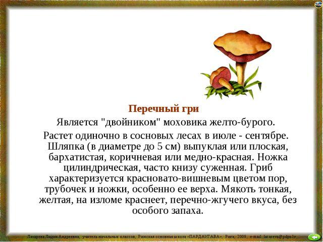 """Перечный гриб Является """"двойником"""" моховика желто-бурого. Растет одиночно в..."""