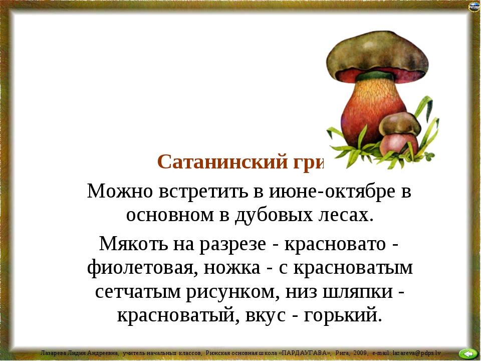 Сатанинский гриб Можно встретить в июне-октябре в основном в дубовых лесах....