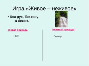 Игра «Живое – неживое» Живая природа Неживая природа Без рук, без ног, а бежи