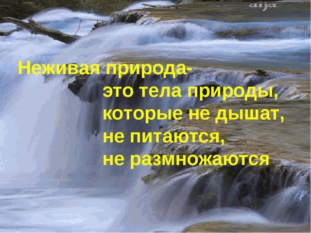 Неживая природа- это тела природы, которые не дышат, не питаются, не размножа...