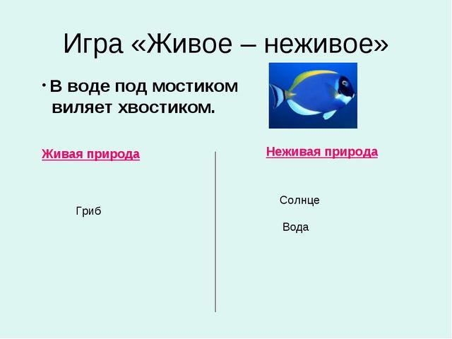 Игра «Живое – неживое» Живая природа Неживая природа В воде под мостиком виля...