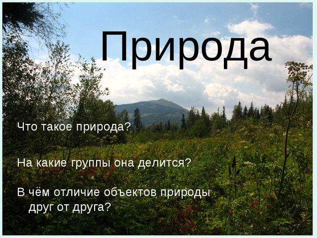 Природа Что такое природа? На какие группы она делится? В чём отличие объекто...